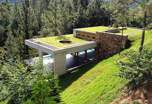 tejados-ajardinados