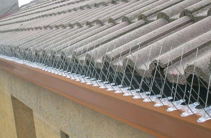 dispositivo anti aves